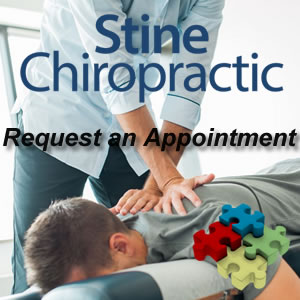 Stine Chiropractic Appointment Request